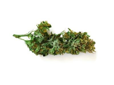 https://phoenixcannabis.ca/wp-content/uploads/2019/01/inner_product_09.png